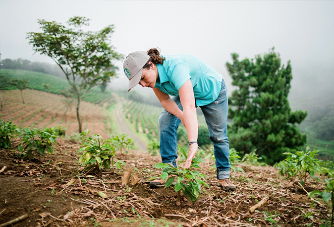 Student farming